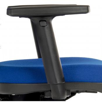 Arms Step Adjustable