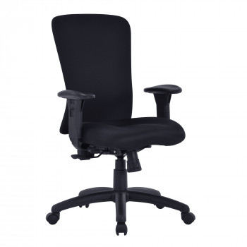 Fortis- Bariatric Managers Chair