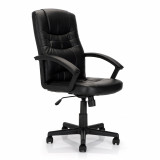 Darwin- High Back Leather Faced Executive Armchair - Black